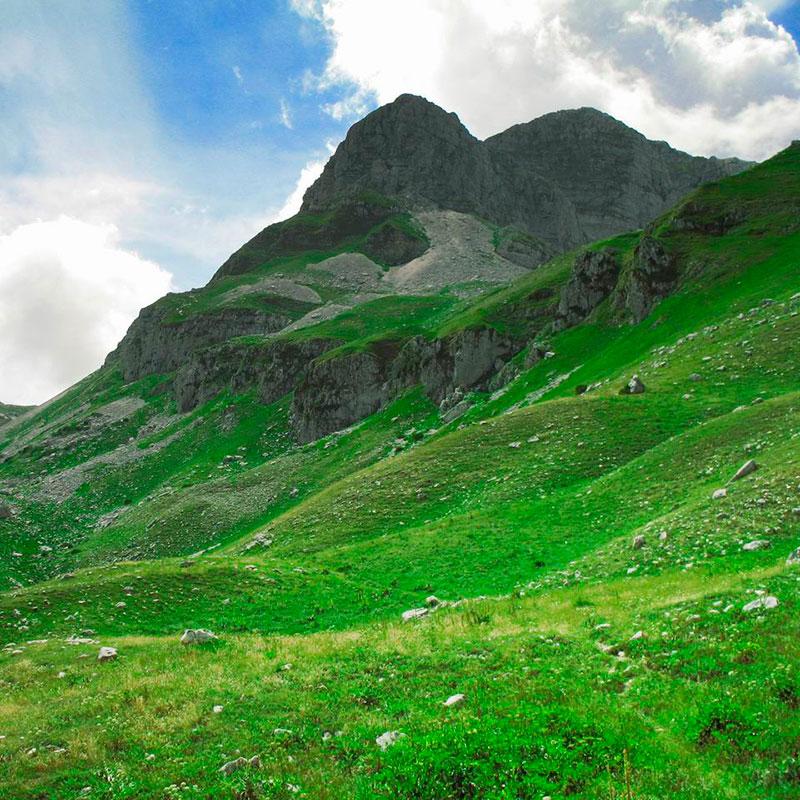 Parco_Nazionale_d'Abruzzo,_Lazio_e_Molise